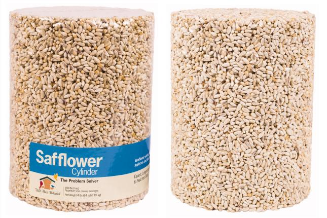Safflower Sensation Seed Cylinder
