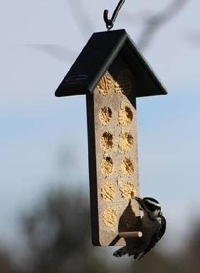 WBU Large Recycled Bark Butter® Feeder