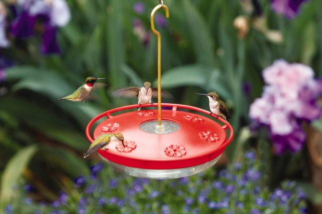 WBU High Perch Large Hummingbrid Feeder