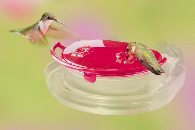 Mini Window Hummingbird Feeder