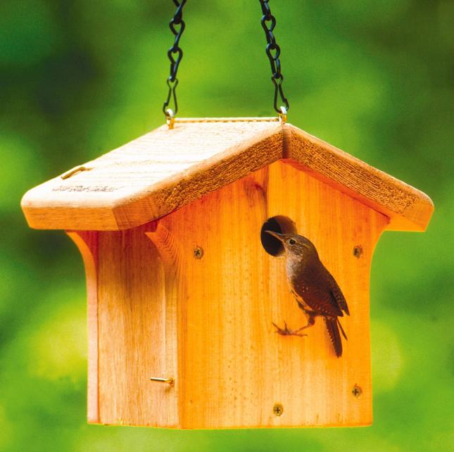 House Wren/Chickadee Nesting Box