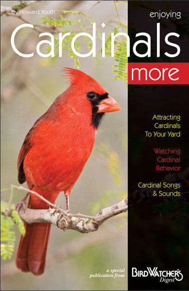 BWD - Enjoying Cardinals More