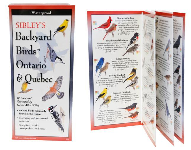 Sibley Pocket Guide Birds of Ontario and Quebec