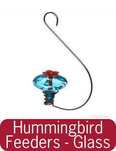 Feeders - Glass Hummingbird