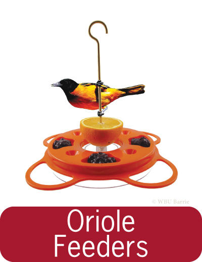 Feeders - Oriole