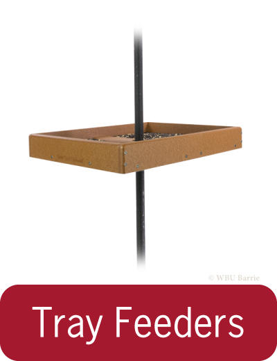 Feeders - Tray