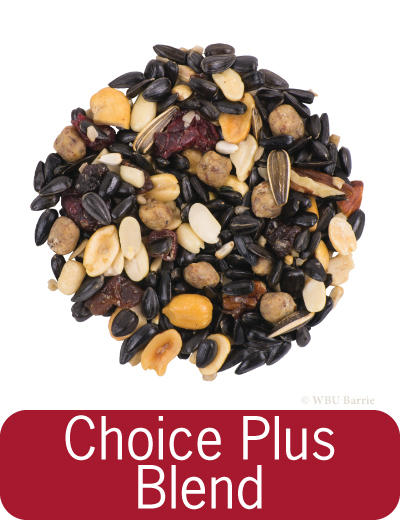 Choice Plus Blend