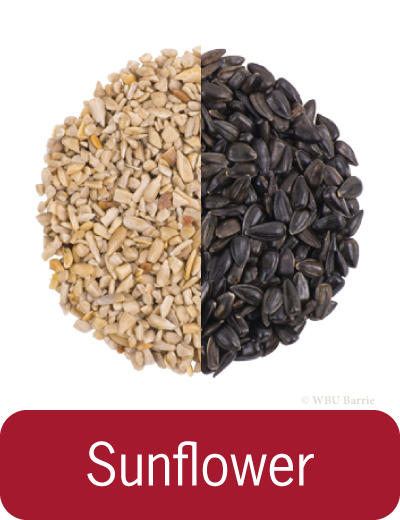 Food - Sunflower