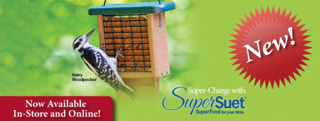 SuperSuet Now Available!