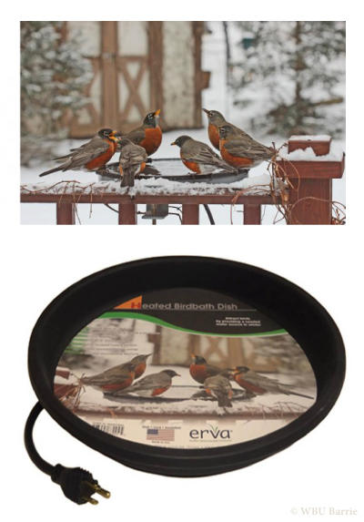 "14"" Heated Birdbath Dish"