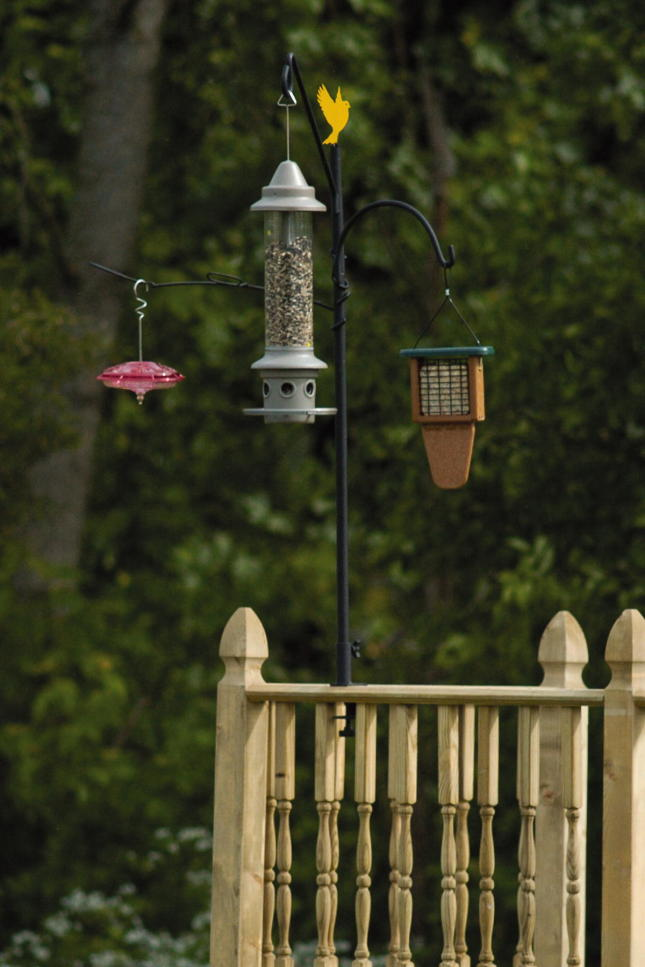 sock at finch suction feeders wild hanging more hangers bird cup decks brackets and for songbird on with hook hooks clamp feeder woodlink window deck plants in thistle garden